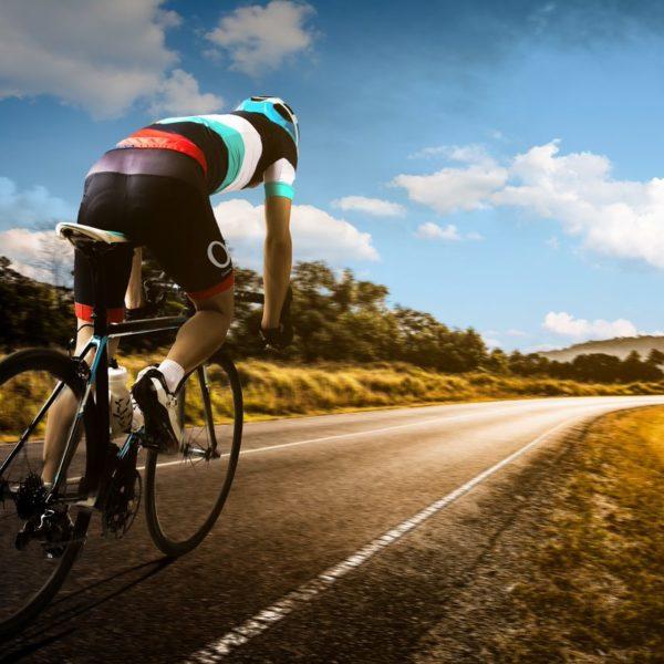 Ciclo Virtual